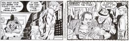 The Amazing Spider-Man Daily Comic Strip, 5/5/1993