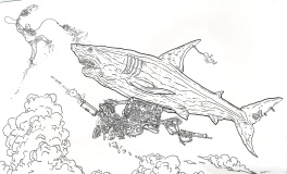 Shark by Darrow !
