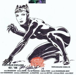 Catwoman par Isherwood