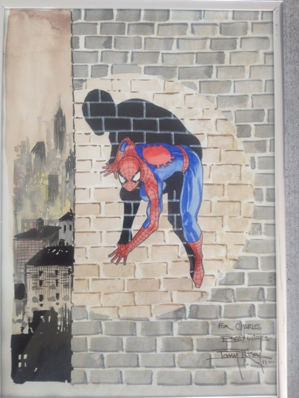 Spiderman by Barry Kitson - Illustration