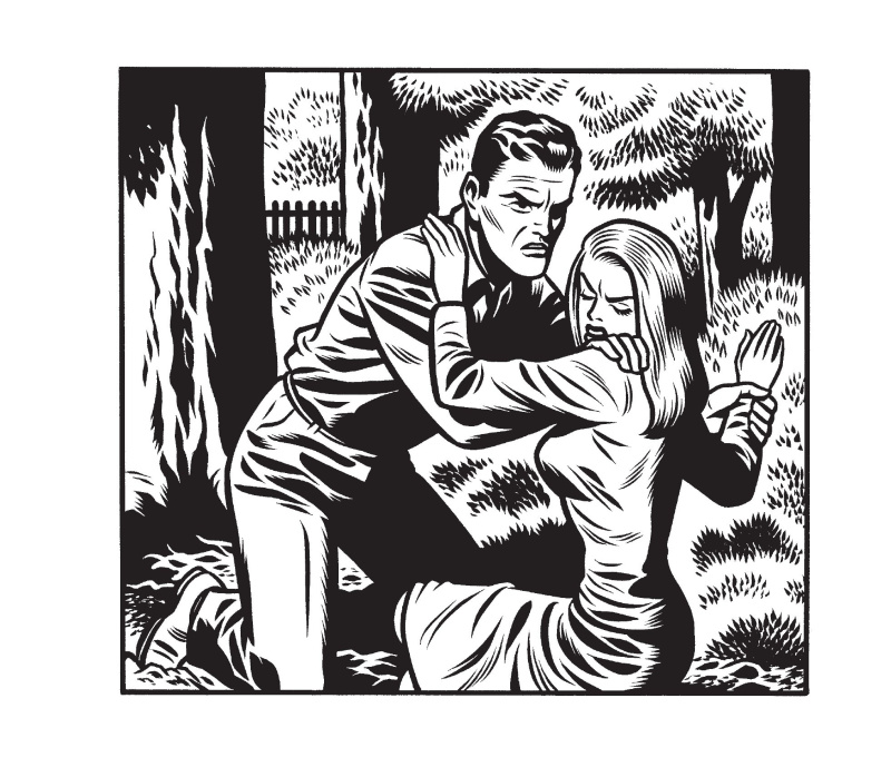 For sale - Love Nest by Charles Burns - Comic Strip